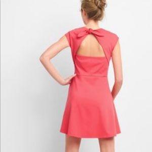 Gap Bunny Tie fit & flare dress NWT 16